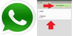 Kerugian Mematikan Centang Biru dan Status Last Seen di WhatsApp