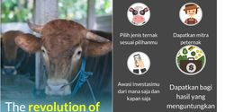 Raup Miliaran, Kandang.in Galang Modal Bagi Peternak Lewat Internet