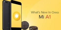Terjadi Lagi! Xiaomi Tarik Pembaharuan Android 8.1 Oreo di Mi A1