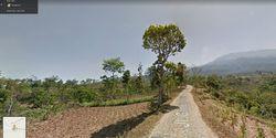 Blusukan via Google Street View Makin Lengkap, Ini Dia Kamera Hebatnya
