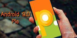 Hape Murah Bakal Lebih Dulu Usung Sistem Operasi Android Pie?