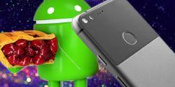 Baru Diluncurkan, Sistem Operasi Android 9.0 Pie Sudah Bikin Masalah