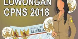 Beredar Info Hoax Lowongan CPNS 2018, Aslinya Cuma Ada di Situs BKN