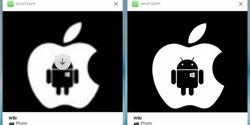 WhatsApp di iPhone Kini Bisa Lihat Foto Video Tanpa Perlu Membuka Aplikasi