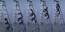 Robot Canggih Ular Tangga, Bisa Naik Turun Tangga dan Masuk Celah Sempit