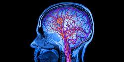 Gelombang Otak Bisa Jadi Password, Peneliti Sudah Tahu Caranya