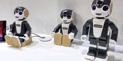 Robot Pemandu Wisata Ini Bisa Antar Jalan-Jalan, Anti Capek dan Baper