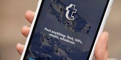 Diduga Mengandung Pornografi, Aplikasi Tumblr Hilang dari Apple Store