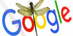 Karyawan Google Tanda Tangani Petisi untuk Gagalkan Proyek Dragonfly