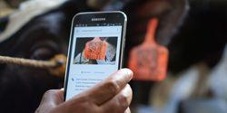 Gerakan Menuju 100 Smart City Makin Berkembang, Warga Bisa Nikmati Pelayanan Efektif