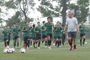 Ada Campur Tangan Shin Tae-yong dalam Skuad Timnas U-16 Indonesia