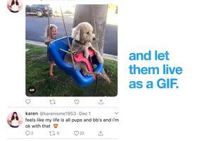 Twitter Akhirnya Mendukung Live Photos, Diunggah Dalam bentuk GIF
