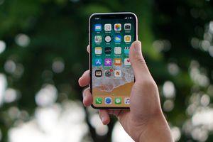 4 Alasan Tidak Menggunakan Pelindung Layar di iPhone