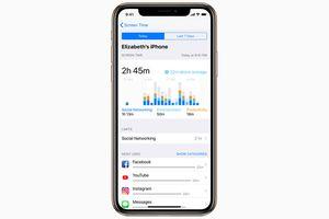 Panduan Lengkap Menggunakan Screen Time dan App Limits di iOS 12