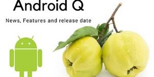 Nama Android P Baru Dimumkan, Sekarang Muncul Prediksi Nama