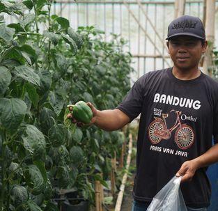 BIOPS Agrotekno: Tingkatkan Hasil Panen dengan Irigasi Pintar