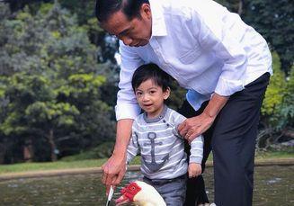 Sederhana dan Banyak Tanaman, Begini Tampilan Rumah Jokowi di Solo!