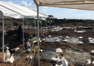 95 Kerangka Warga Kulit Hitam Korban Kerja Paksa Ditemukan di Texas