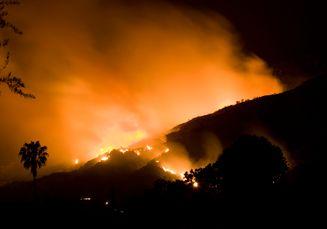 Kebakaran Besar di Hutan Califiornia: 56 Tewas, Ratusan Orang Hilang
