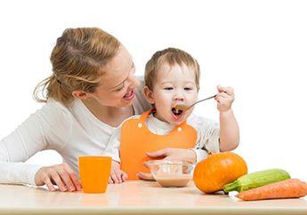 Kapan Idealnya Bayi Mendapatkan Makanan Padat?
