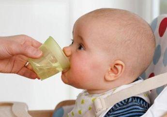 Moms Jangan Pernah Beri Bayi 0-6 Bulan Air Putih, Ini Bahayanya!