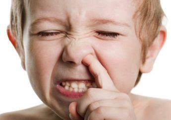 Bahayakah Bila Si Kecil Punya Kebiasaan Ngupil? Ini Moms Kata Ahlinya