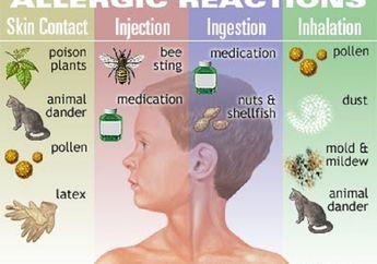 Berita Kesehatan Terbaru: Si Kecil  Alergi? Ini Cara Mudah Mendeteksinya