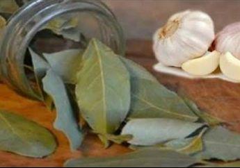 Taruh 7 Daun Salam dan Bawang Putih di Rumah, Rasakan Hal Positif Ini