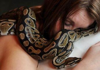 Sepanjang Malam Wanita Ini Tidur dengan Piton, Dokter pun Ungkap Sesuatu yang Menyeramkan tentang Ular Tersebut