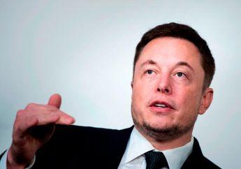 Elon Musk Ditawari Main Film Porno dengan Bayaran Rp2 Miliar