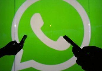 3 Trik Baca Pesan WhatsApp Tanpa Ketahuan dan Kena Centang Biru