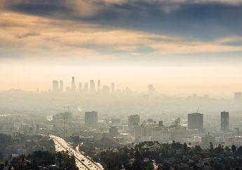Terlalu Lama Terpapar Polusi Udara Sebabkan Perubahan Genetik Otak