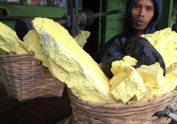Kisah Penambang Belerang di Gunung Ijen yang Hasilkan Banyak 'Uang Instan' Walau Nyawa Bisa Melayang