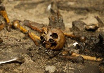 Ribuan Tulang Manusia di Denmark Ungkap Ritual Pertempuran Suku Barbar