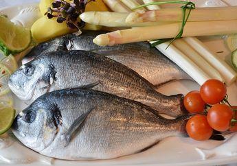 Mau Jaga Kesehatan Mata, Otak, dan Bagian Tubuh Lain? Yuk, Makan Ikan!
