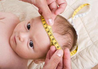 Ini Perkembangan Fisik Krusial Bayi 0-1 Tahun, Catat Moms dan Dads!