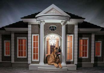 Mewah! Kandang Anjing Ini Harganya Bisa Mencapai 265 Juta Rupiah