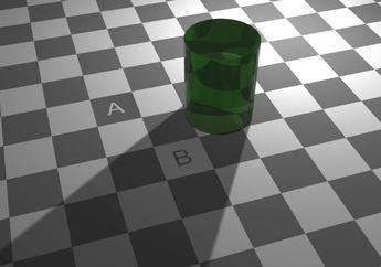 Ilusi Optik Ini Akan Menghilang Jika Kamu Fokus Menatapnya, Berhasil?