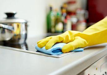 Bermasalah Dengan Kecoak Di Dapur? Usir Dengan Cara Praktis Ini!