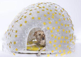 Anti-Mainstream! Inilah 15 Kumpulan Rumah Anjing dengan Desain Terunik