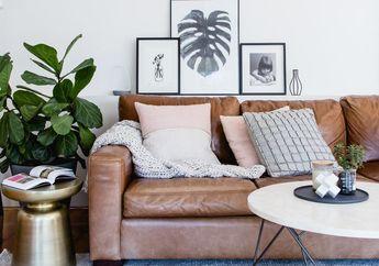 Harga Mahal, Hati-hati Merawat Sofa Kulit. Begini Caranya yang Benar!