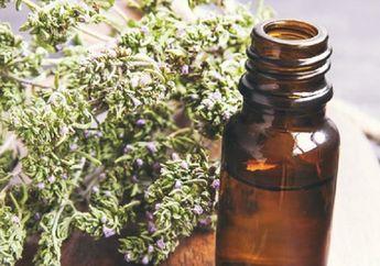 5 Rekomendasi Minyak Esensial untuk Seimbangkan Hormon buat Kesehatan