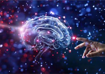 Tingkatkan Ketajaman Otak Anak dengan Lima Makanan Berikut