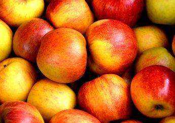 Benarkah Apel Harus Dikupas Kulitnya Sebelum Dimakan?