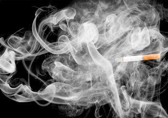 Balita 2,5 Tahun Asal Sukabumi Ini Merokok 40 Batang Sehari, Sang Ibu Tak Kuasa Menolaknya