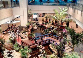 Ini 5 Bandara di Asia Tenggara yang Masuk Daftar 100 Bandara Terbaik Dunia, Indonesia Nomor Berapa?