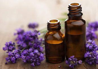 Rumah Harus Punya Aroma Khas, Yuk Ciptakan dengan 5 Cara Ini!