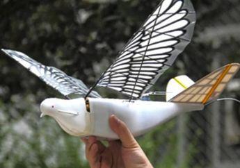 Tiongkok Luncurkan Drone Berbentuk Burung Untuk Mengawasi Warganya