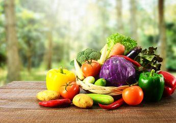 Makanan Cepat Basi? Yuk, Simak 5 Tips Simpan Bahan Makanan Ini