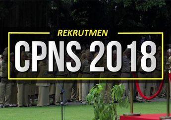 Pendaftar CPNS 2018 Membludak, Kemenag Tunda Pengumuman Seleksi Administrasi